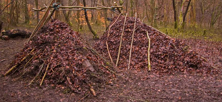 Although debris shelters can be created with natural materials, they are not a low impact approach to camping. Such shelters should always be dismantled after use.
